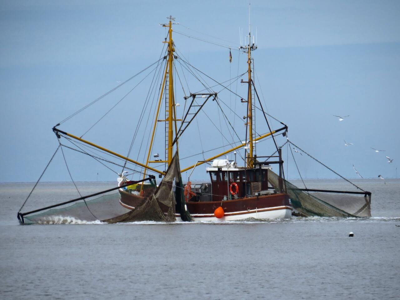 4_Fischfang